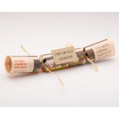 Picture of ECO CHRISTMAS CRACKER