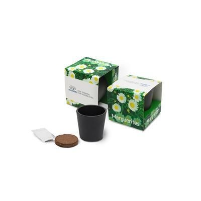 Picture of CERAMIC POTTERY GROW KIT