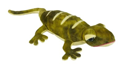 Picture of LIZARD SOFT TOY
